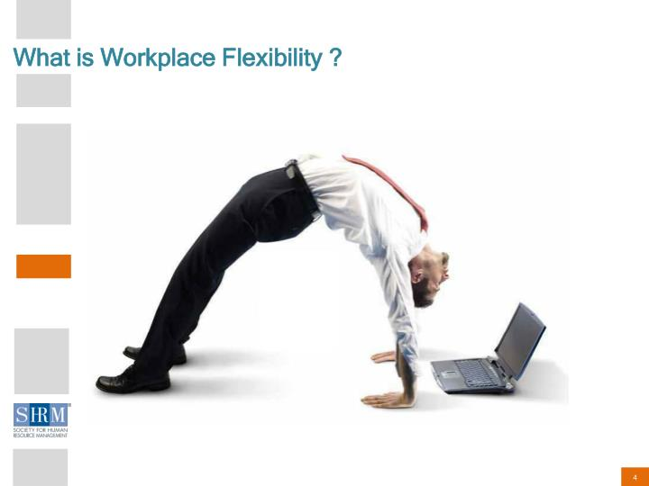 What is Workplace Flexibility ?