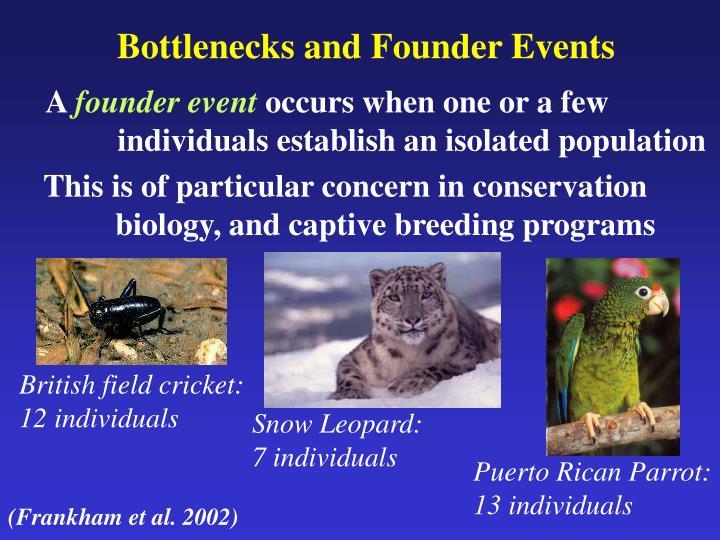 Bottlenecks and Founder Events