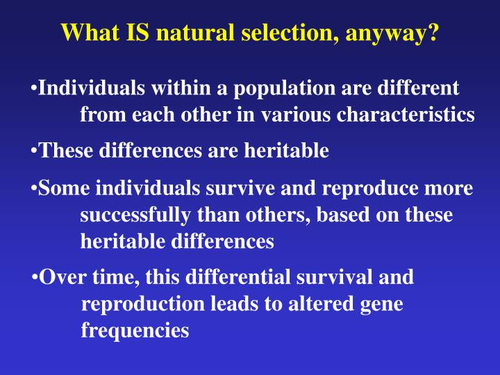 What is natural selection anyway