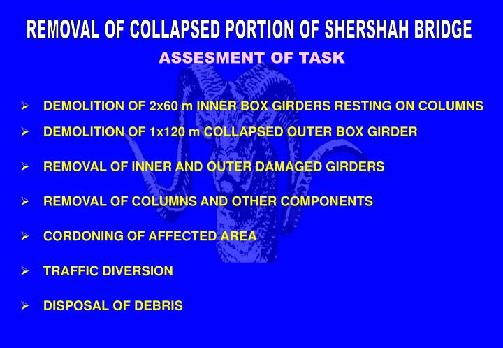 REMOVAL OF COLLAPSED PORTION OF SHERSHAH BRIDGE