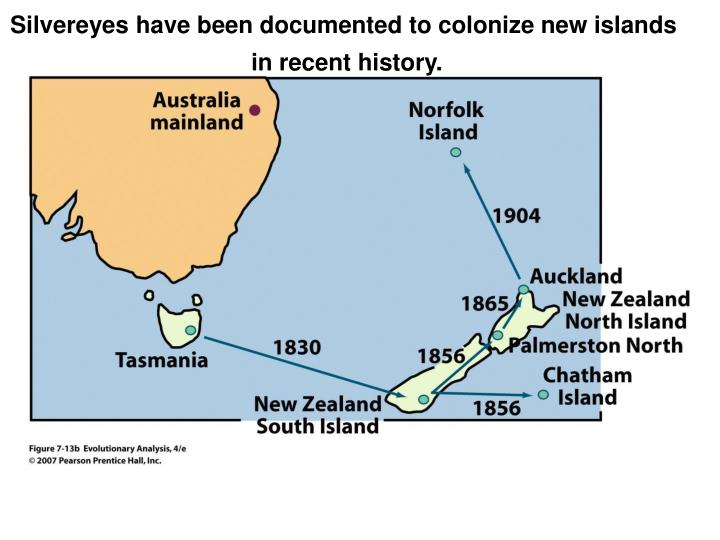 Silvereyes have been documented to colonize new islands