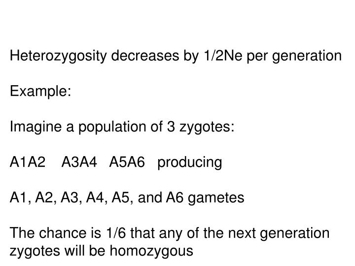 Heterozygosity decreases by 1/2Ne per generation