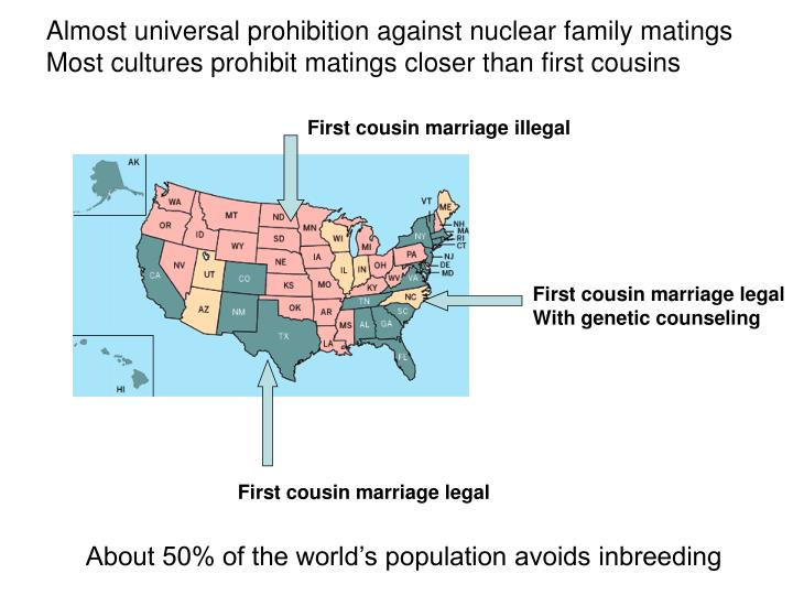 First cousin marriage illegal