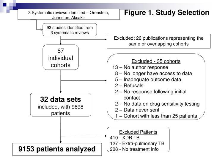 Figure 1. Study Selection