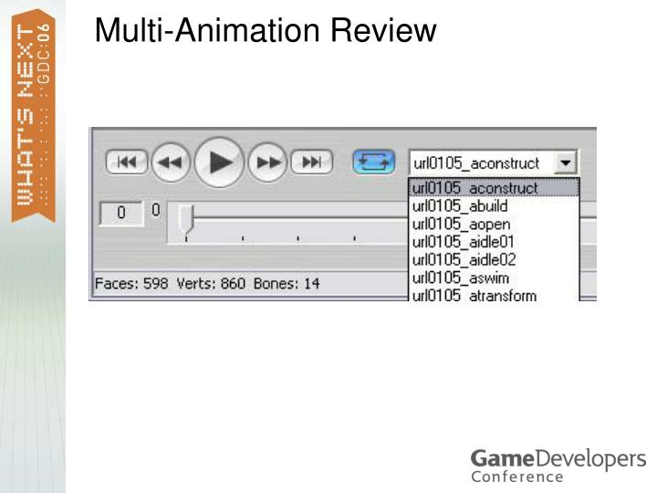 Multi-Animation Review
