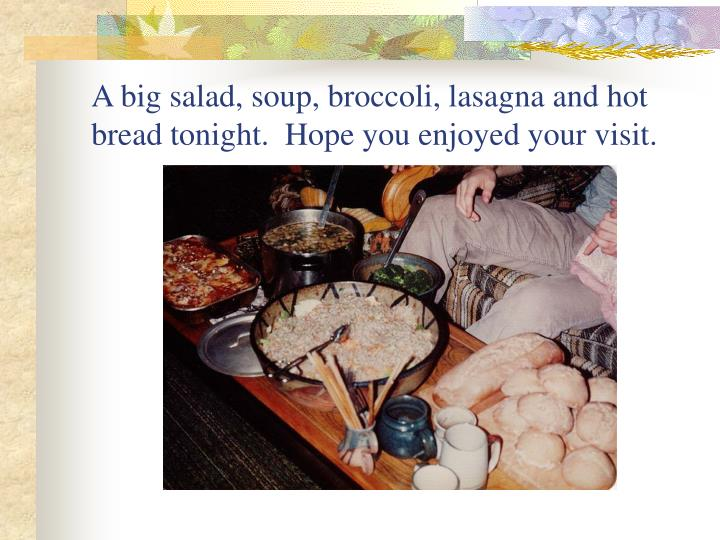 A big salad, soup, broccoli, lasagna and hot bread tonight.  Hope you enjoyed your visit.