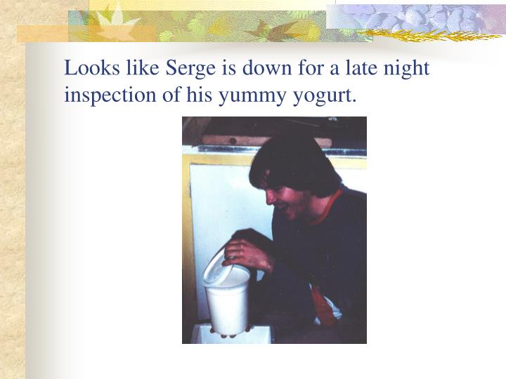 Looks like Serge is down for a late night inspection of his yummy yogurt.