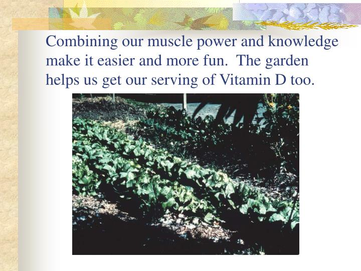 Combining our muscle power and knowledge  make it easier and more fun.  The garden helps us get our serving of Vitamin D too.