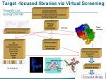 t arget focused libraries via virtual screening