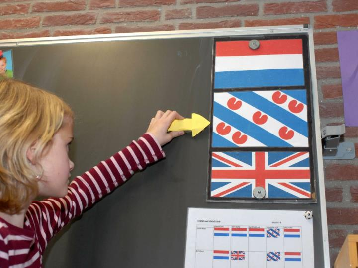 Activities and projects on multilingualism with a focus on regional and minority languages