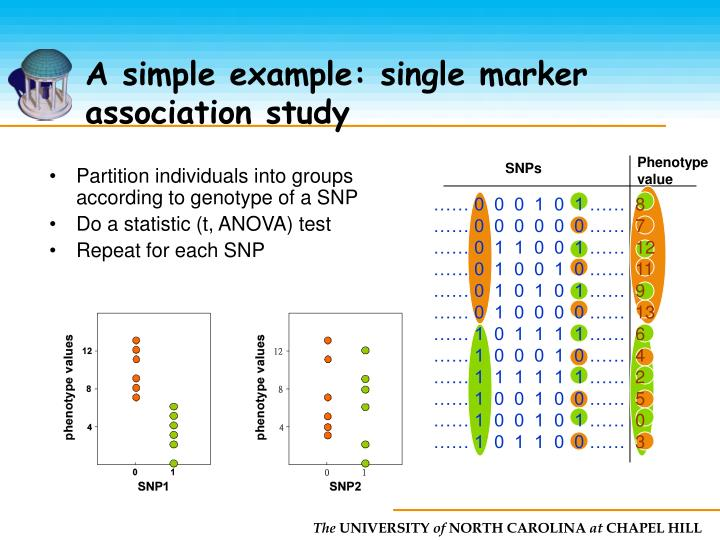 A simple example: single marker association study