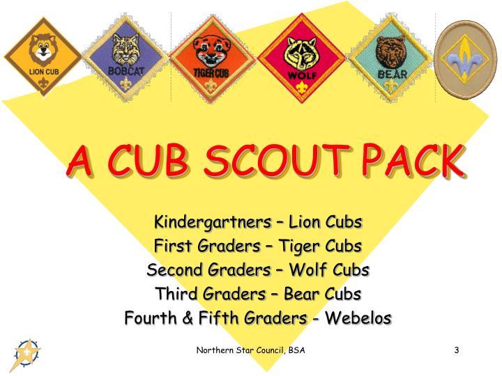 A cub scout pack