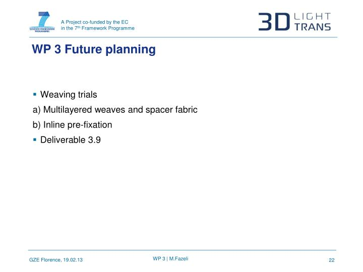 WP 3 Future planning