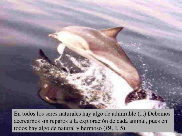 En todos los seres naturales hay algo de admirable (...) Debemos acercarnos sin reparos a la exploración de cada animal, pues en todos hay algo de natural y hermoso (