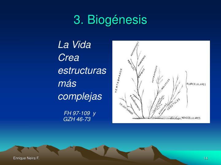 3. Biogénesis