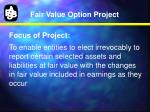fair value option project