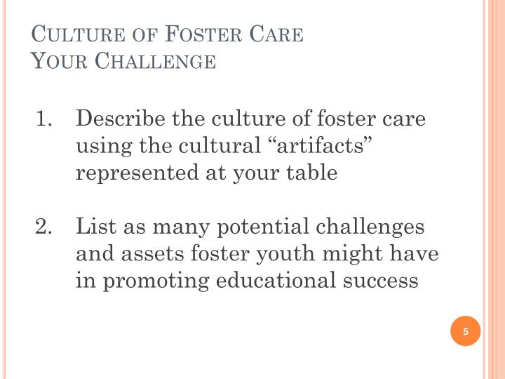 Culture of Foster Care