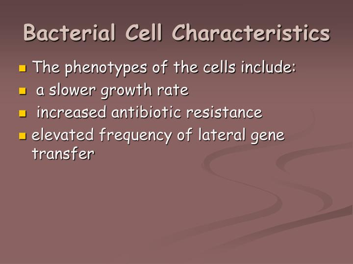 Bacterial Cell Characteristics
