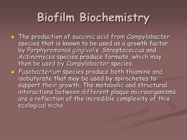 Biofilm Biochemistry