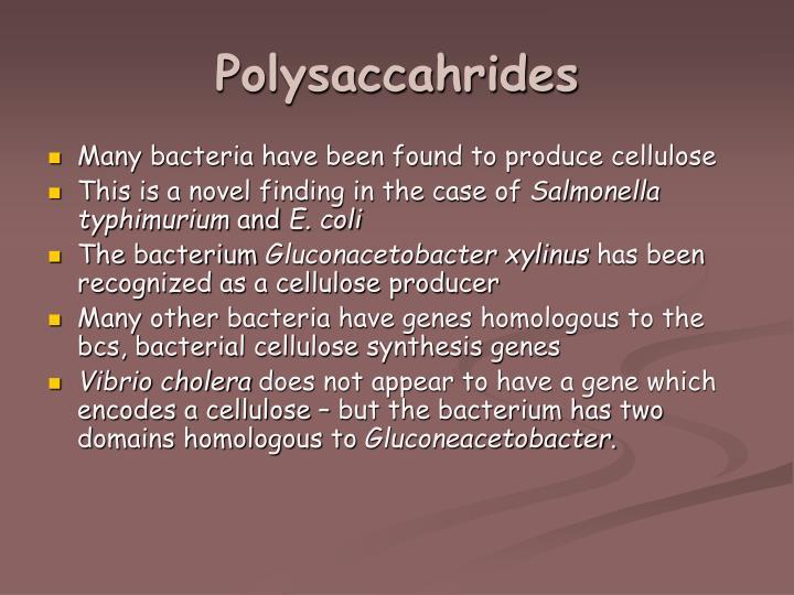 Polysaccahrides