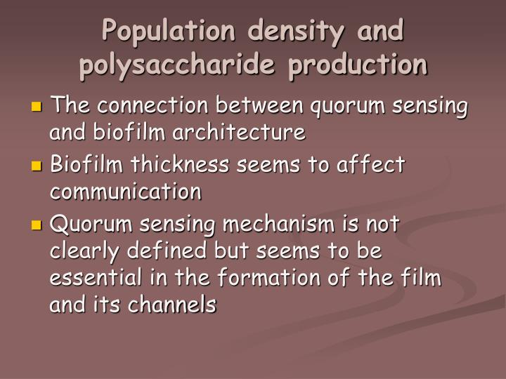 Population density and polysaccharide production