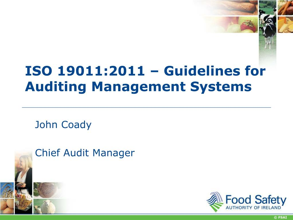 Iso 19011 Free Download
