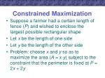 constrained maximization1