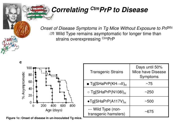 Onset of Disease Symptoms in Tg Mice Without Exposure to PrP