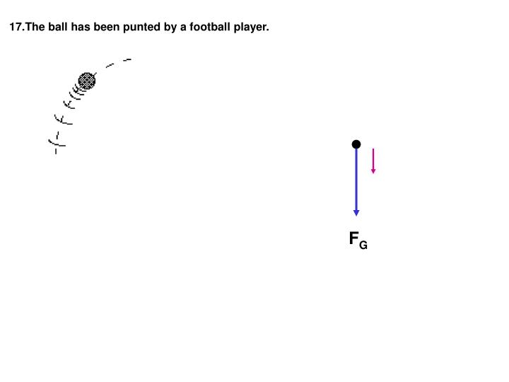 17.The ball has been punted by a football player.