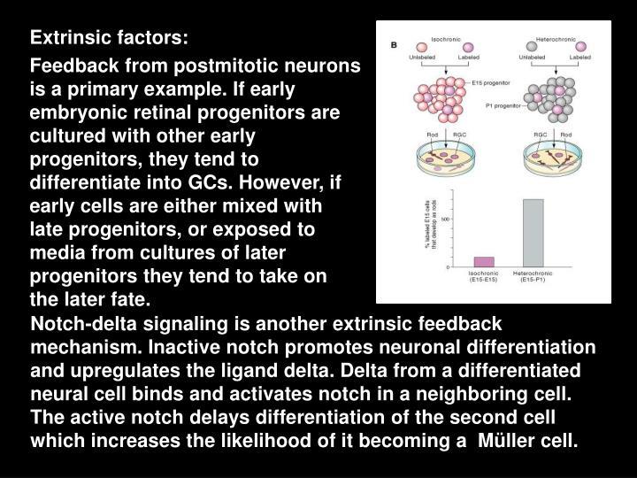 Extrinsic factors: