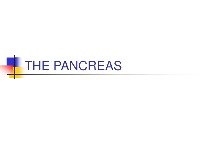 the pancreas n.