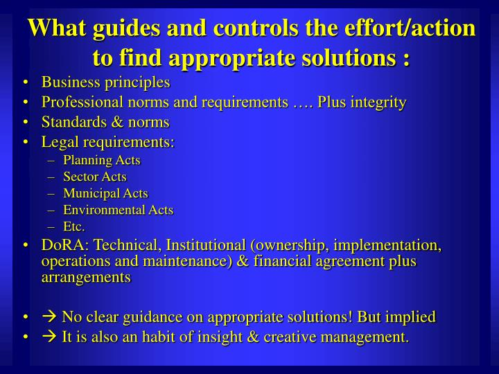 What guides and controls the effort/action to find appropriate solutions :