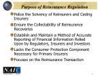 purpose of reinsurance regulation