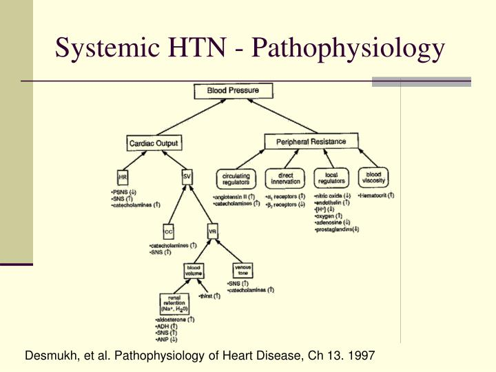 Systemic HTN - Pathophysiology