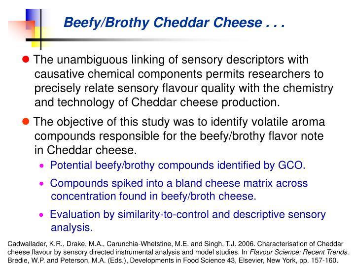 Beefy/Brothy Cheddar Cheese . . .