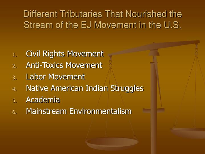 Different Tributaries That Nourished the Stream of the EJ Movement in the U.S.