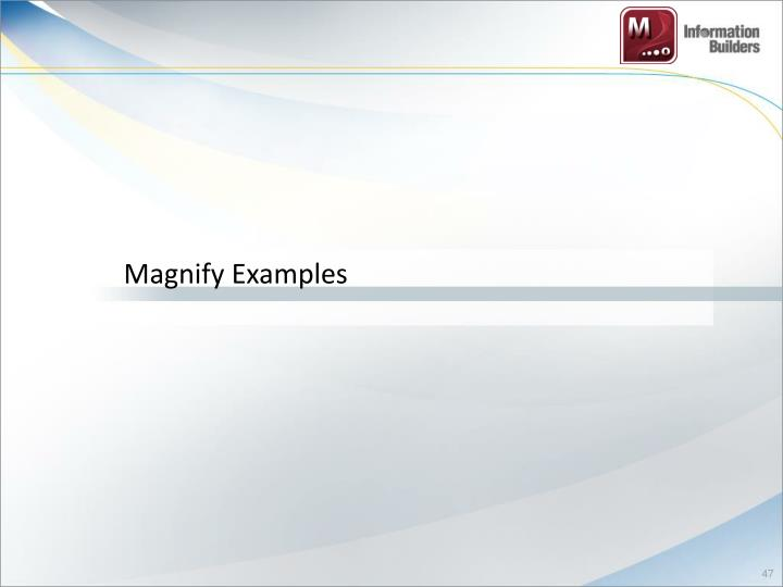 Magnify Examples