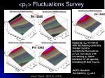 p t fluctuations survey