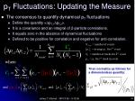 p t fluctuations updating the measure