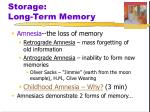 storage long term memory1