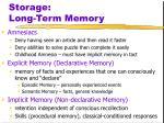 storage long term memory2