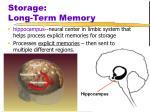 storage long term memory3