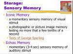 storage sensory memory