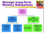 storage long term memory subsystems