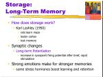 storage long term memory