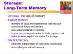 storage long term memory1