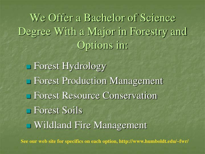 We Offer a Bachelor of Science Degree With a Major in Forestry and Options in: