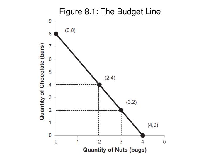 Figure 8.1: The Budget Line
