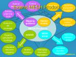 extend mesh products