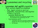 lysosomes and recycling